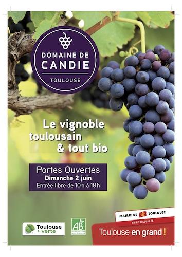 Candie2019prog p1